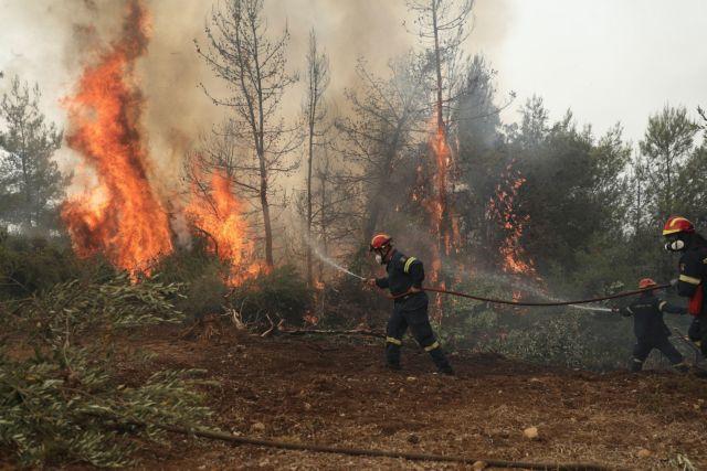 Εύβοια – «Μαζέψτε τους Ρουμάνους πυροσβέστες γιατί... θα τα σβήσουν όλα» | tanea.gr