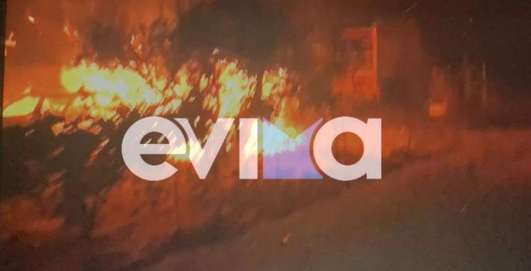 Νύχτα «κόλασης» στον Μυρτιά Ευβοίας – Καίγονται σπίτια | tanea.gr