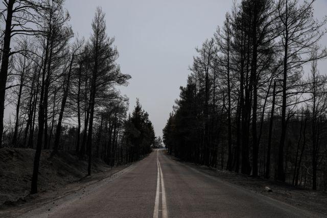 Εύβοια – Διπλασιάζει ο ΟΑΕΔ τη διάρκεια διακοπών κοινωνικού τουρισμού στους πυρόπληκτους δήμους | tanea.gr