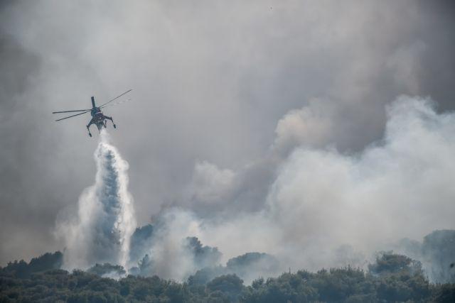 Βίλια – «Μπορεί να γίνει Εύβοια η περιοχή αν ξεφύγει η φωτιά»   tanea.gr