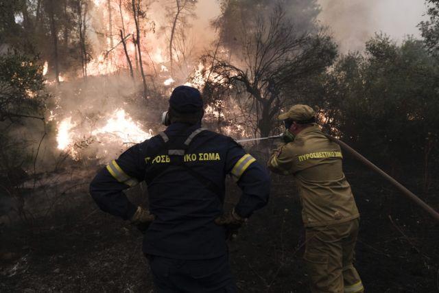 Φωτιές – Ισραηλινός πυροσβέστης τραυματίστηκε στο μάτι | tanea.gr