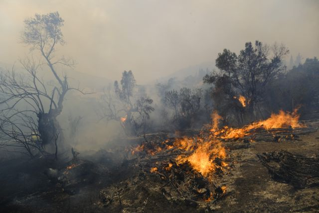 Φωτιά στην Αττική – Η εικόνα της καταστροφής από ψηλά   tanea.gr