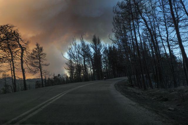 Φωτιά στην Εύβοια – «Αν δεν έρθουν εναέρια μέσα, θα καούμε ζωντανοί» – Ύστατη έκκληση των κατοίκων   tanea.gr