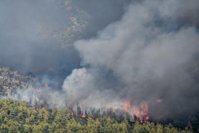 Μεγάλη φωτιά στη Ζάκυνθο   tanea.gr