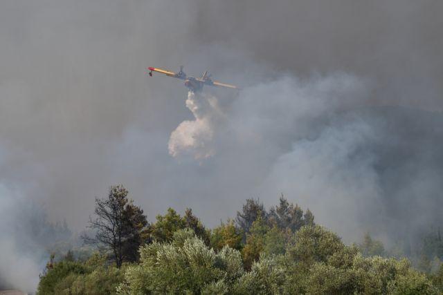 Vilia- Forest fire – Settlements evacuated | tanea.gr