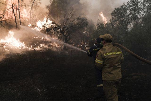 Φωτιά στη Μάνη – Στην ορεινή Δεσφίνα το μέτωπο | tanea.gr