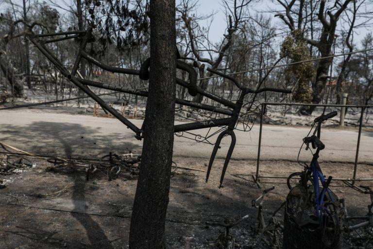 Εύβοια – «Το 90% της παραγωγικής δραστηριότητας δεν υπάρχει» λόγω της φωτιάς   tanea.gr