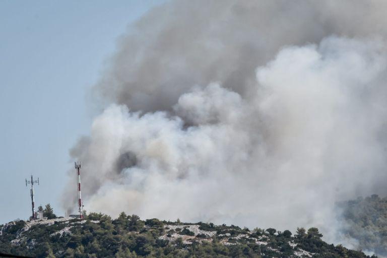 Μεγάλη φωτιά τώρα στην Άμφισσα – Ισχυρές δυνάμεις στην περιοχή | tanea.gr