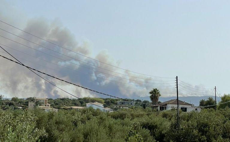 Μάχη με τις φλόγες για να μη μπει η φωτιά στο Γύθειο   tanea.gr