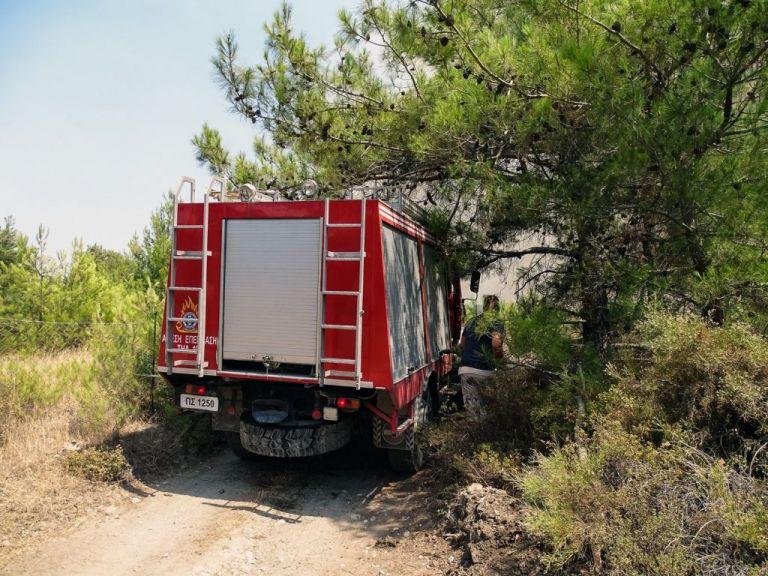 Νέα φωτιά στην Ανατολική Μάνη – Δεν απειλούνται κατοικημένες περιοχές   tanea.gr