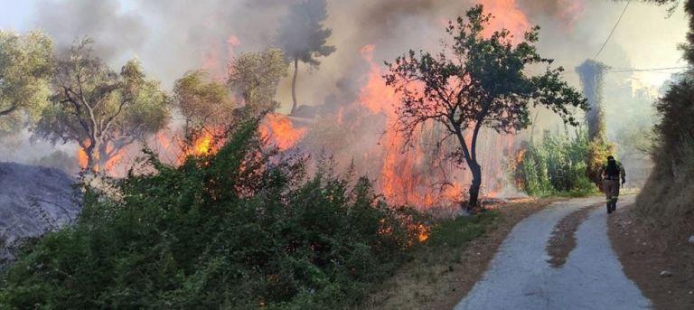 Προσήχθη ύποπτος για την πυρκαγιά στο Αργάσι   tanea.gr