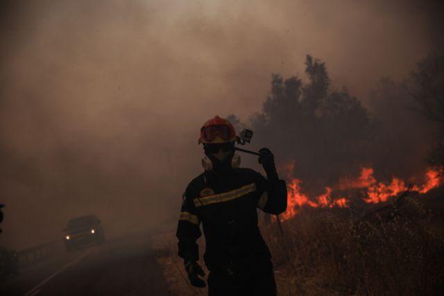 Φωτιά στην Εύβοια – Τραυματίστηκε πυροσβέστης – Είναι καλά στην υγεία του | tanea.gr