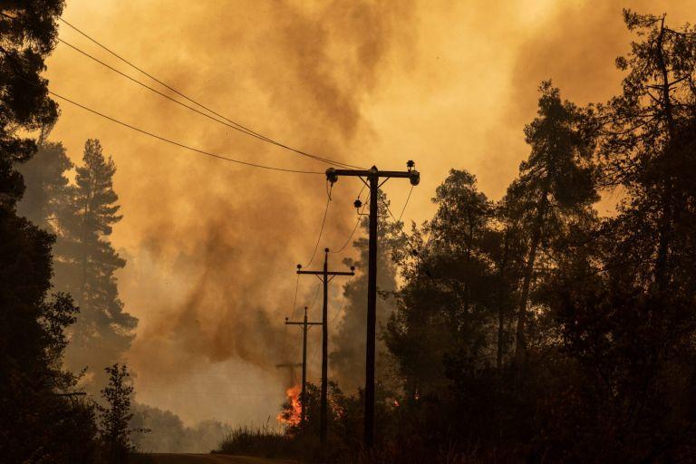 Φωτιές – 336% αύξηση της καμένης γης στην Ελλάδα | tanea.gr