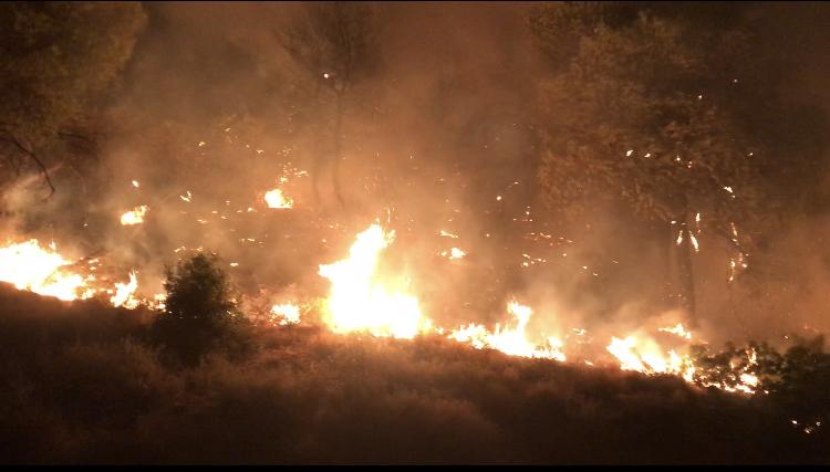 ΓΓΠΠ – Πολύ υψηλός κίνδυνος πυρκαγιάς τη Δευτέρα σε πολλές περιοχές της χώρας   tanea.gr