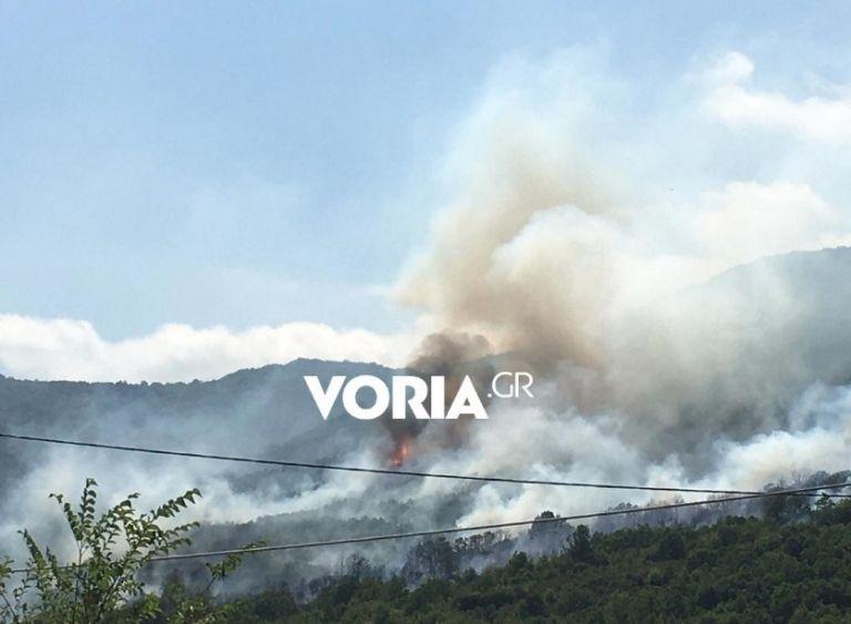 Καβάλα – Φωτιά στους πρόποδες του Παγγαίου | tanea.gr