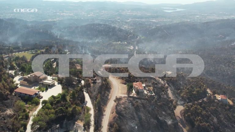 Βιβλική καταστροφή στην Αττική – Το drone του MEGA στις καμένες εκτάσεις | tanea.gr