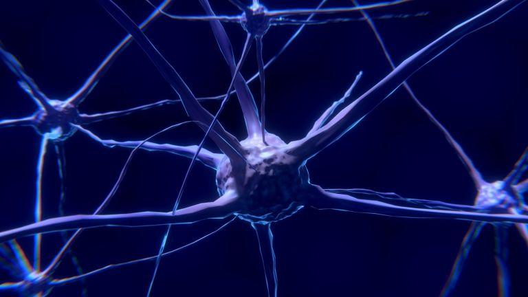 Έξι μήνες μετά αποκαθίστανται οι εγκεφαλικές βλάβες από κοροναϊό | tanea.gr