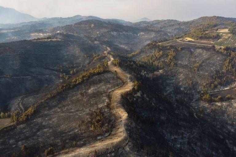 Φωτιές – Περισσότερα από ένα εκατ. στρέμματα κάηκαν μέσα σε δύο εβδομάδες στην Ελλάδα | tanea.gr
