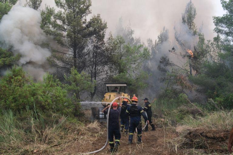 Φωτιές – Πώς και πότε θα αποζημιωθούν οι πυρόπληκτοι   tanea.gr