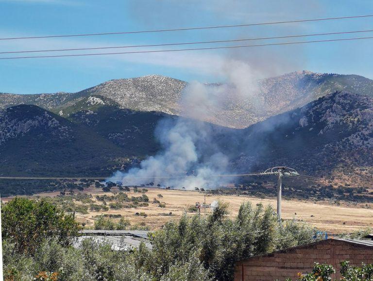 Υψηλός κίνδυνος πυρκαγιάς τη Δεύτερα σε πέντε περιοχές – Σε επιφυλακή όλες οι δυνάμεις της Πυροσβεστικής   tanea.gr