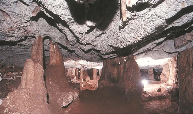 Μαθήματα στη σπηλιά του Ευριπίδη | tanea.gr
