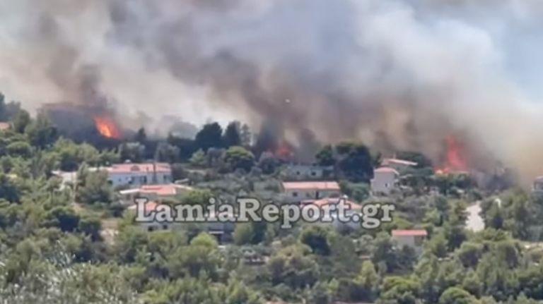 Φωτιά στη Φθιώτιδα – Κάηκαν σπίτια στον Θεολόγο | tanea.gr