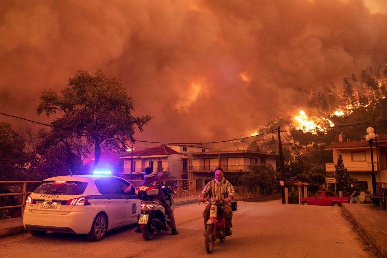 Φωτιά στην Εύβοια – Σε απόγνωση οι ρητινοκαλλιεργητές   tanea.gr