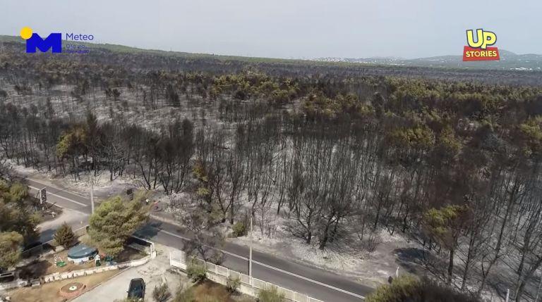 Φωτιά στη Βαρυμπόμπη – Σοκάρει η εικόνα από ψηλά - Στάχτη και αποκαΐδια   tanea.gr
