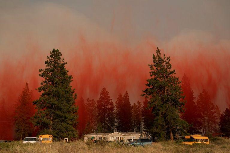 ΤΙΜΕ: «Ο πλανήτης καίγεται εδώ και ένα μήνα – δείτε τι συμβαίνει» | tanea.gr