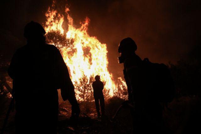 Φωτιά στη Νέα Μάκρη – Με το φως της ημέρας θα αποκαλυφθεί η έκταση της καταστροφής | tanea.gr