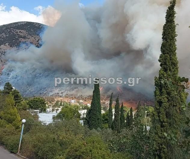 Φωτιά στην παραλία Διστόμου | tanea.gr