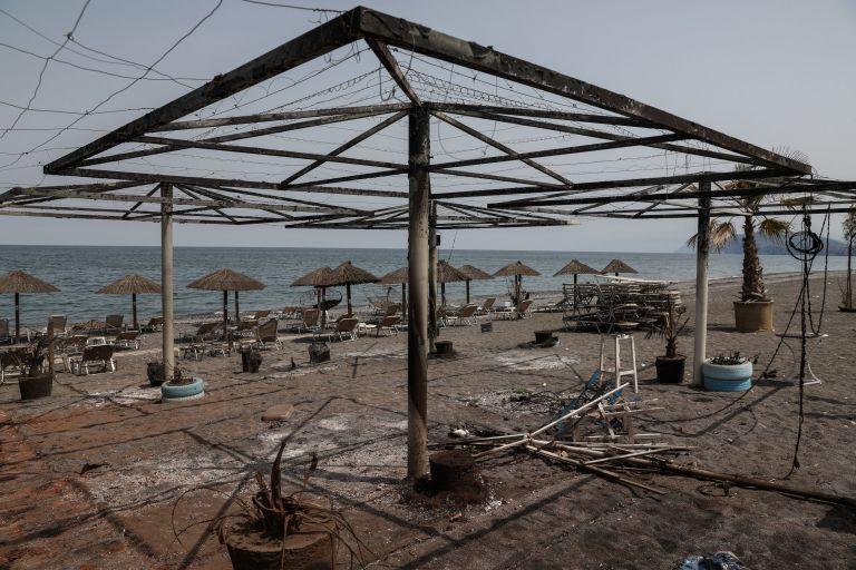 ΓΣΕΒΕΕ – Στοίχημα η ανασυγκρότηση των πυρόπληκτων περιοχών της Εύβοιας | tanea.gr