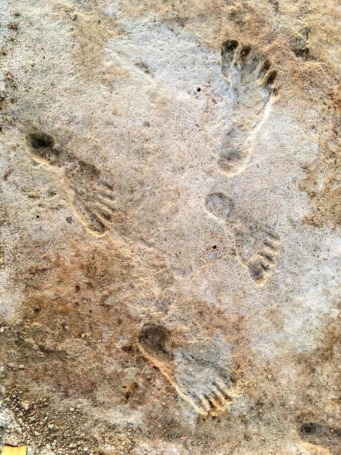 Βρέθηκαν οι αρχαιότερες πατημασιές ανθρώπων ηλικίας 23.000 ετών | tanea.gr