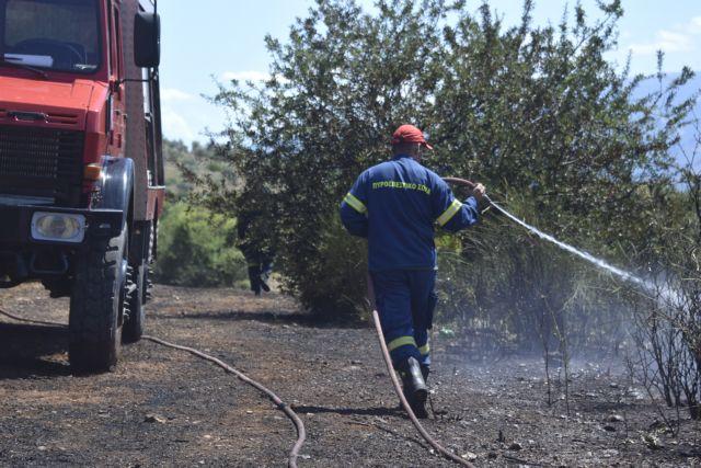 Φωτιά καίει αγροτοδασική έκταση στη Λιαντίνα Λακωνίας   tanea.gr