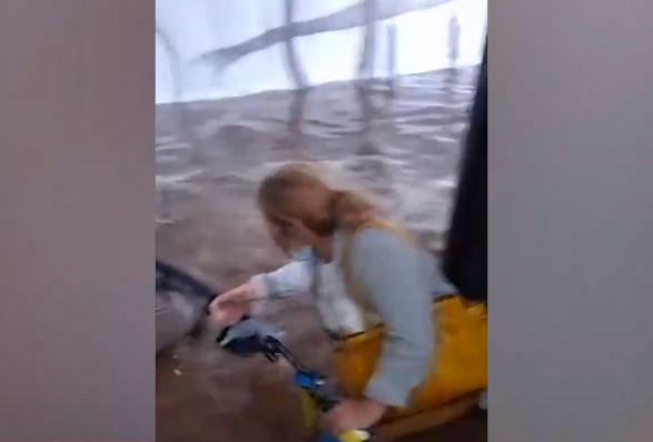 Βίντεο ντοκουμέντα από τον απεγκλωβισμό επιβατών από το λεωφορείο που «βούλιαζε»   tanea.gr